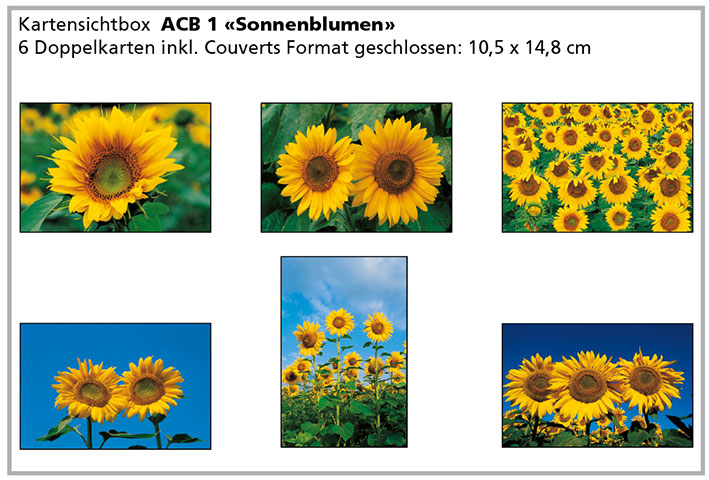 ACB 1 «Sonnenblumen»