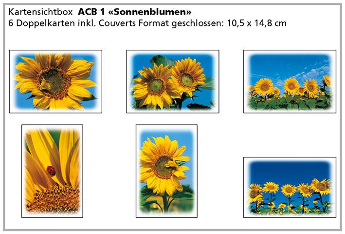 ACB 2 «Sonnenblumen»