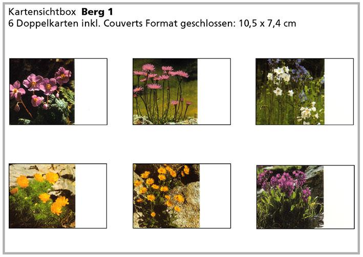 Berg1 «Bergblumen»