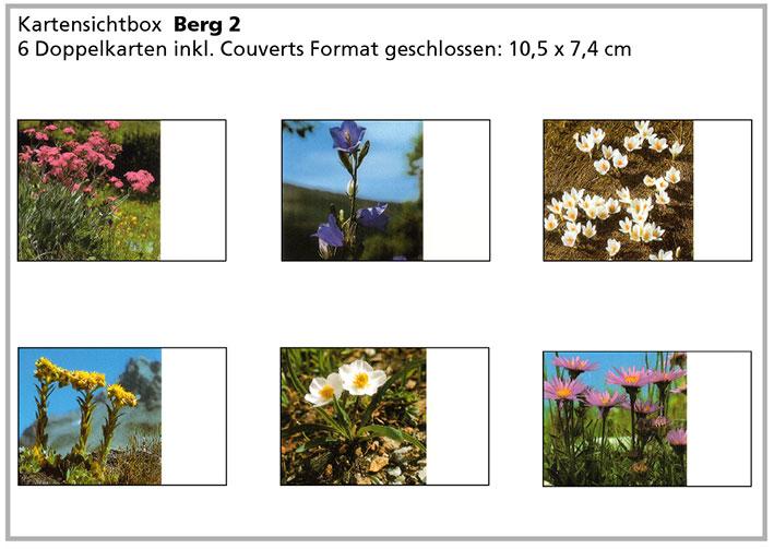 Berg2 «Bergblumen»