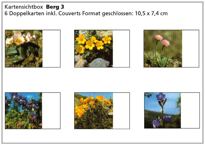 Berg3 «Bergblumen»