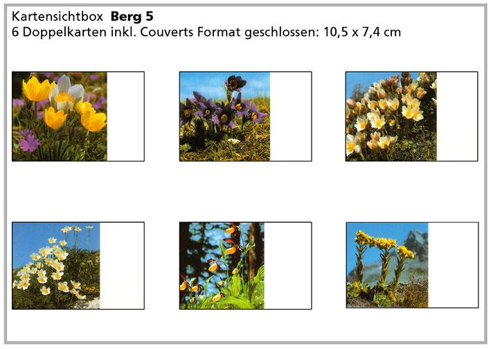 Berg5 «Bergblumen»