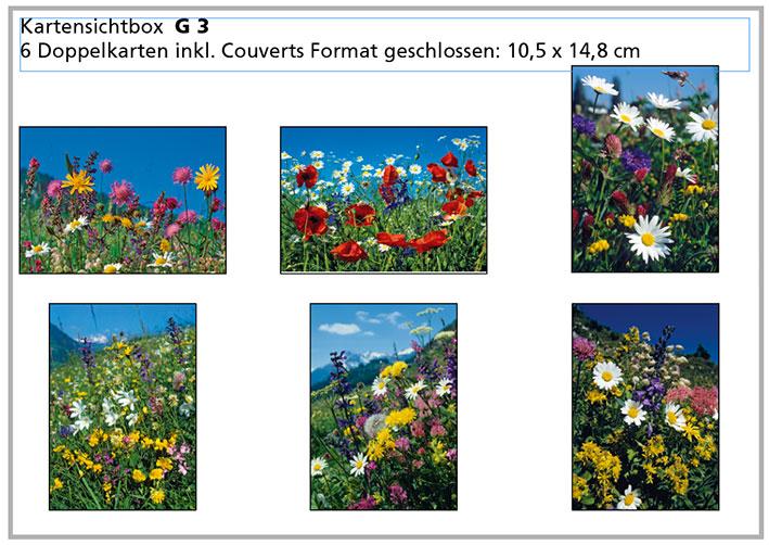 G3 «Alpenblumen»