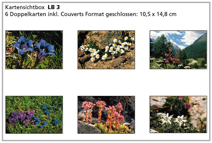 LB3 «Alpenblumen»