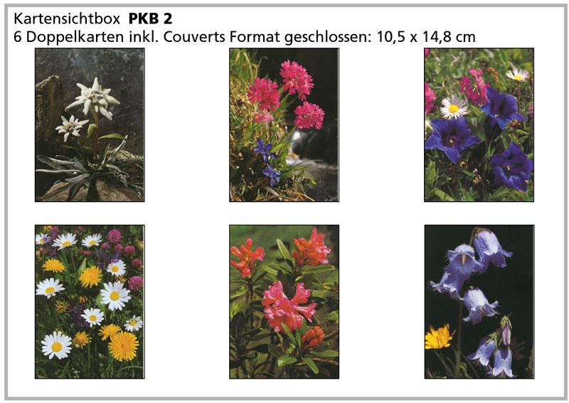 PKB2 «Alpenblumen»