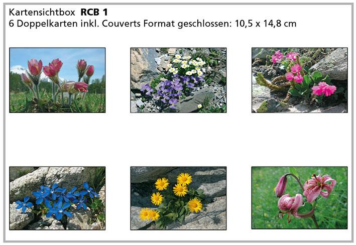RCB1 «Alpenblumen»