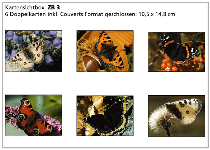 ZB3 «Schmetterlinge»