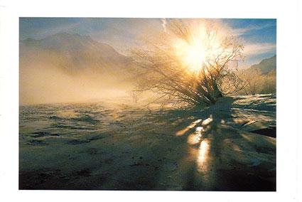 Ld 40 «Winterlandschaft»
