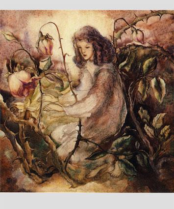204546 «Herr, segne meine Rosen»