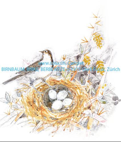 Cd550 «Birnbaum, Birke, Berberitze»